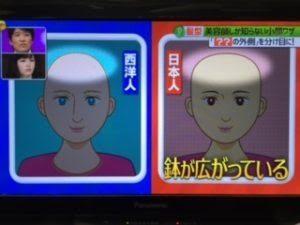 日本人の骨格